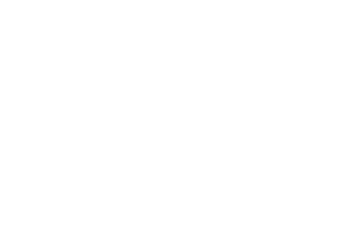 Somerhill logo